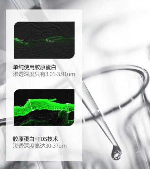 TDS技术是护肤黑科技?竟然能让肌肤10倍吸收胶原蛋白!