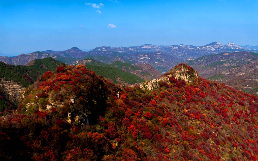 金秋赏红叶的最佳去处  ——青州圣峪口天赐山景区
